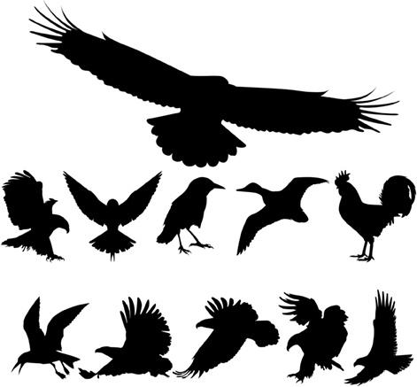 Birds Silhouettes Free CDR Vectors Art
