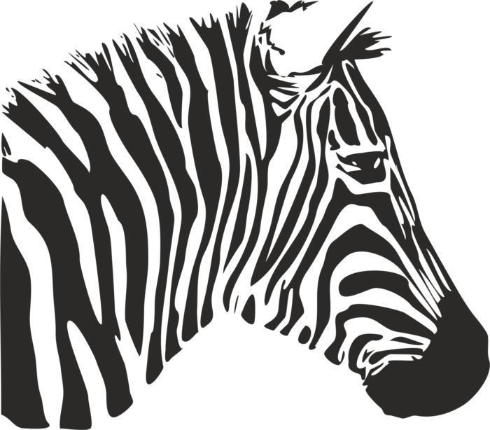 Zebra Stencil Free CDR Vectors Art