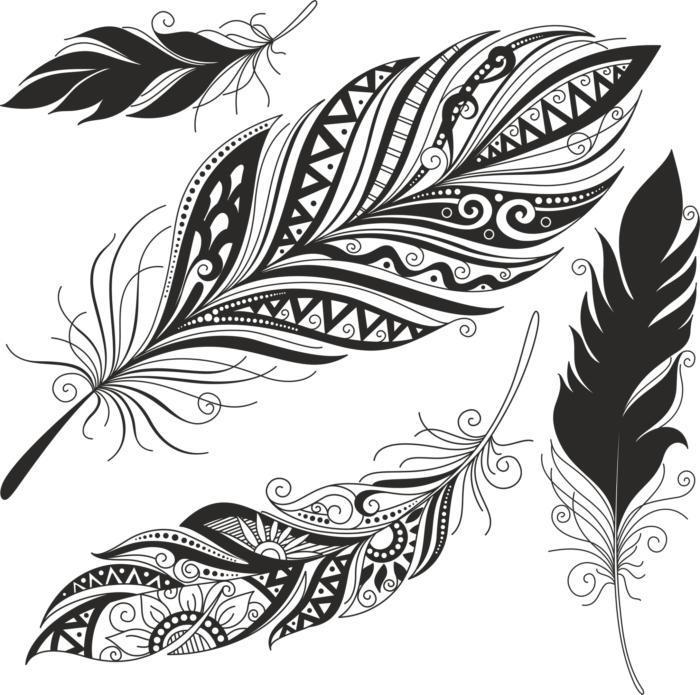 Feather Set Free CDR Vectors Art