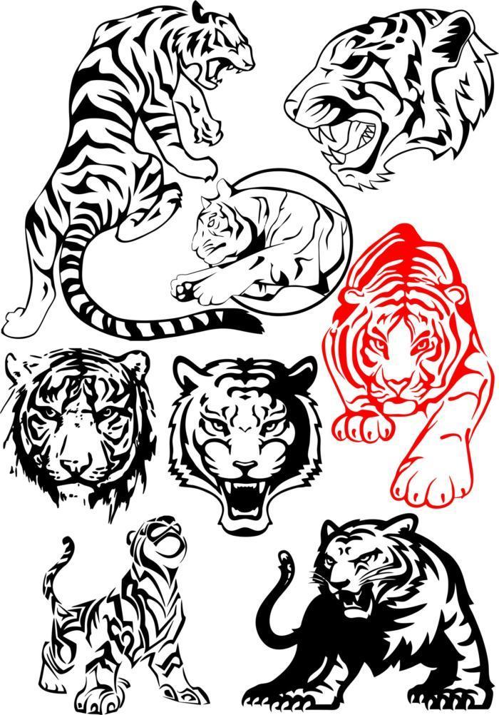 Big Tiger Vectors Pack Free CDR Vectors Art