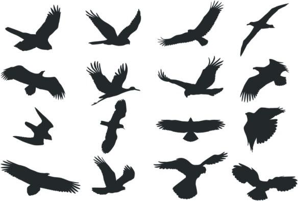 Bird silhouette Free CDR Vectors Art