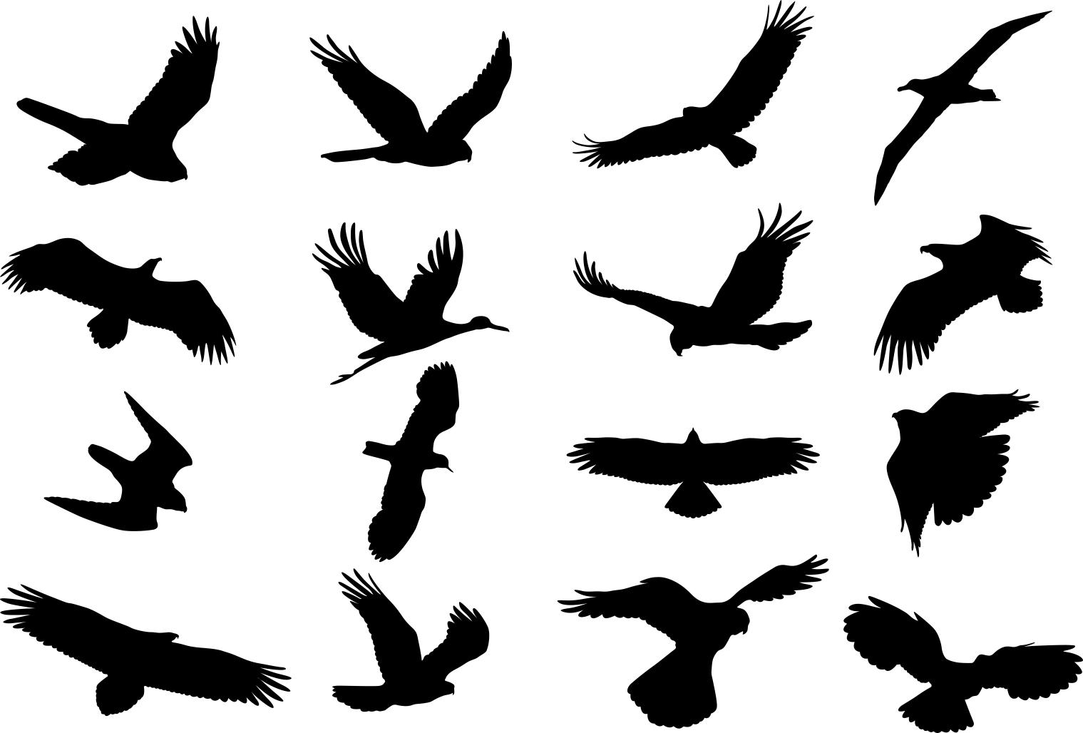 Birds Silhouette Set Free CDR Vectors Art