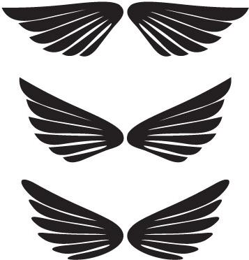 Dccanim_wings -248370 Free CDR Vectors Art