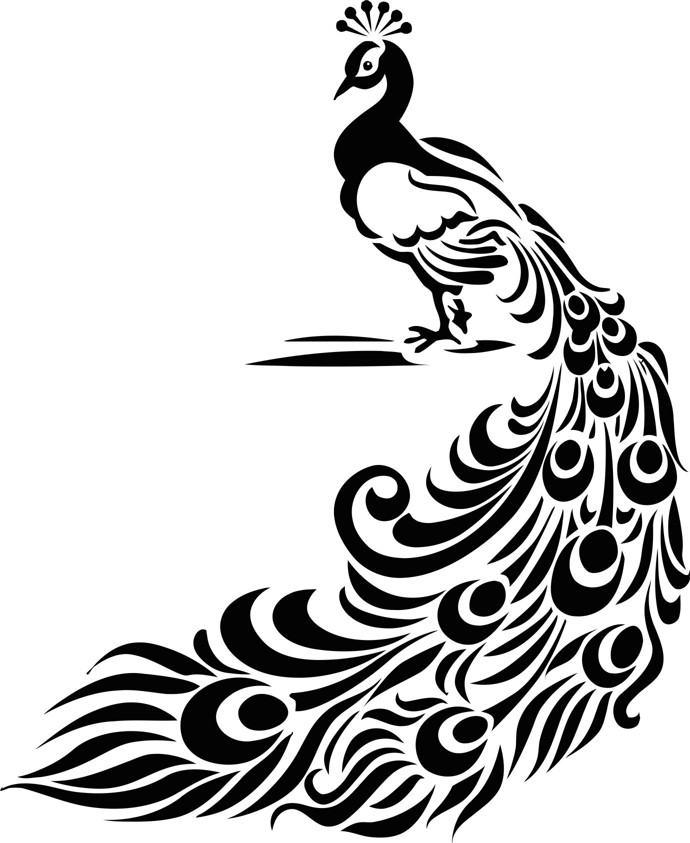 Peacock File Free CDR Vectors Art