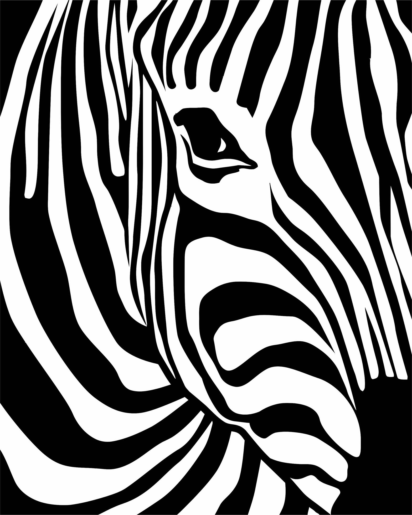 Zebra Print File Free CDR Vectors Art