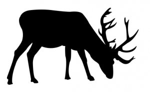 Deer Grazing Free DXF File