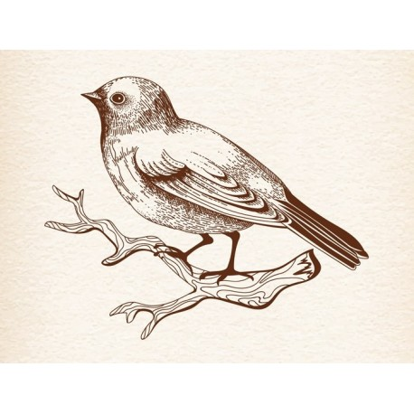 Sitting Bird Free DXF File