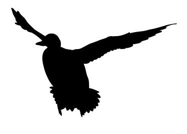 Mallard Duck Free DXF File