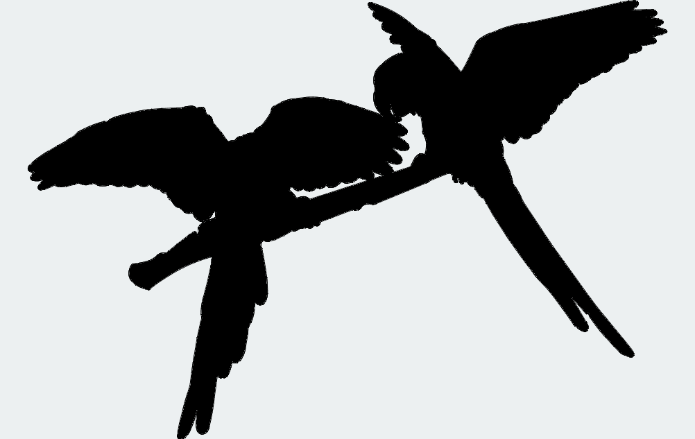 Parrot Pair One Free DXF File