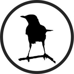 Coasters Birds On The Tree Branch Free DXF File