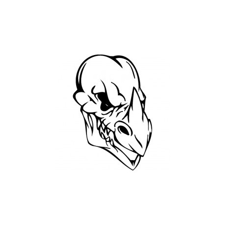 Horror Skull Bird Head 016 Free DXF File