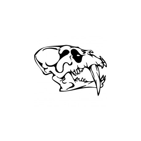 Horror Skull Bird Head 011 Free DXF File
