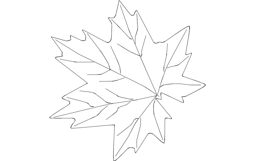 Leaf  Maple Free DXF File