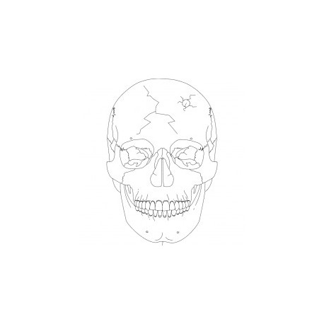 Skull Simple Free DXF File