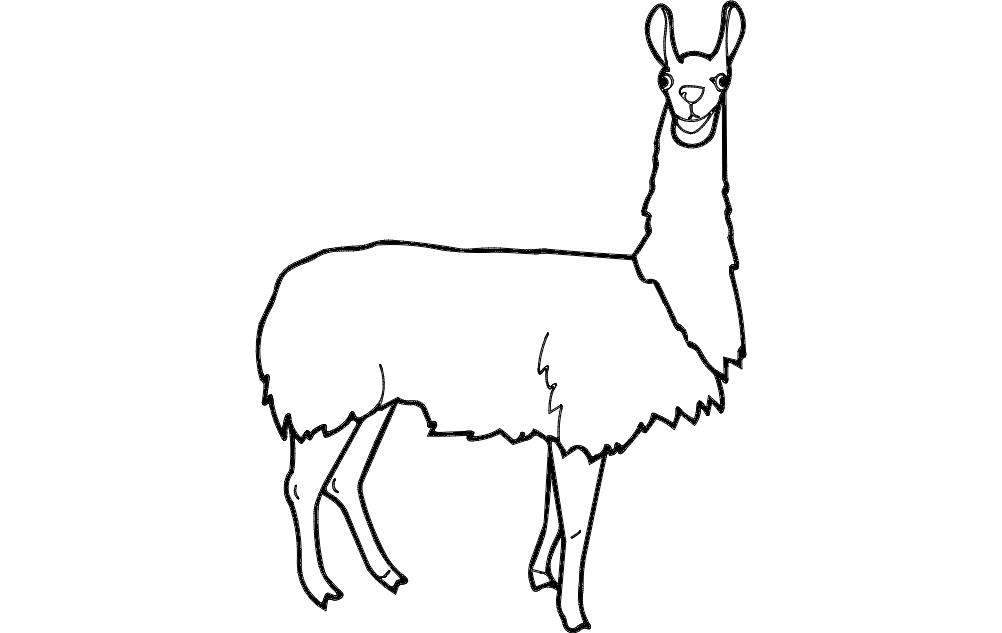 Lama Animal Free DXF File