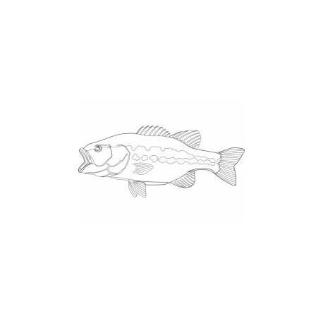 Peixe Fish Free DXF File
