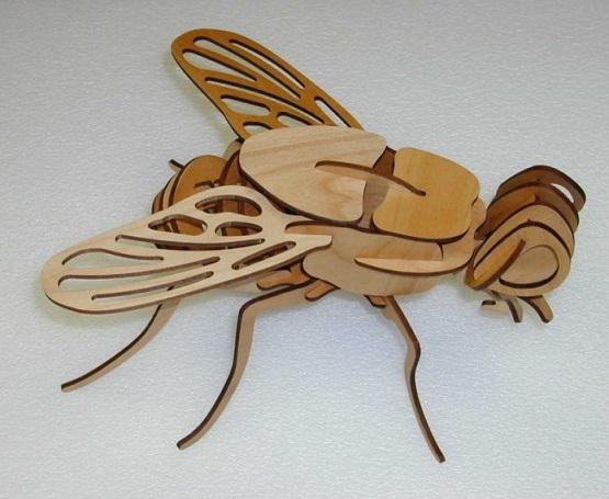 Laser Cut Wooden 3d Fly Tempate Free CDR Vectors Art