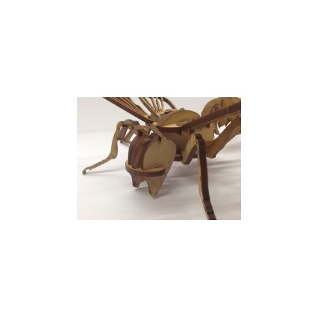 Bee 3d Free DXF File