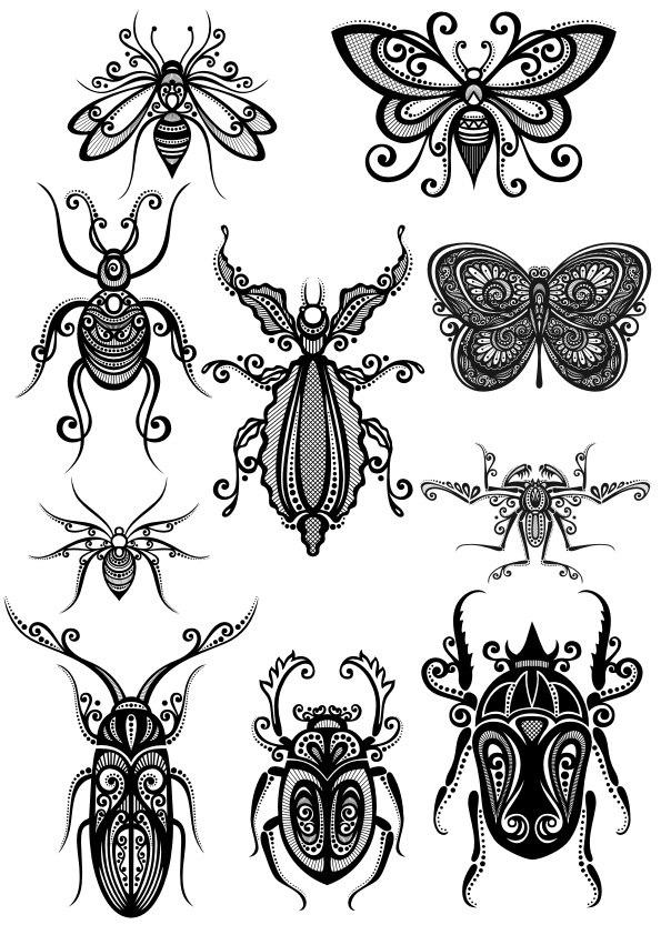 Insect Ornament Free CDR Vectors Art