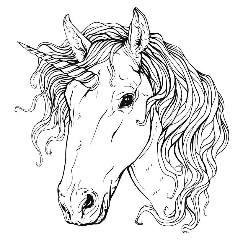 Unicorn Head Sketch Free CDR Vectors Art