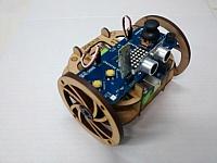 Kiwibot Laser Cut Design Template Free CDR Vectors Art