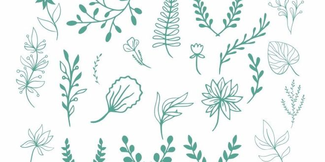Decor Plants Leaves Free DXF File