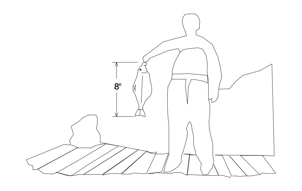 Halibut Sized Free DXF File