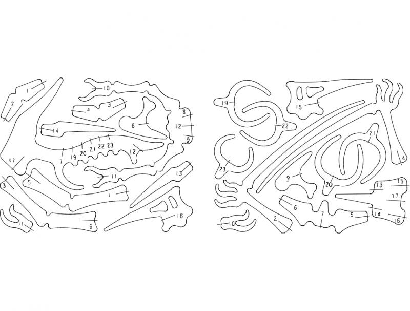 Flugsaurier 01 3d Puzzle Free DXF File