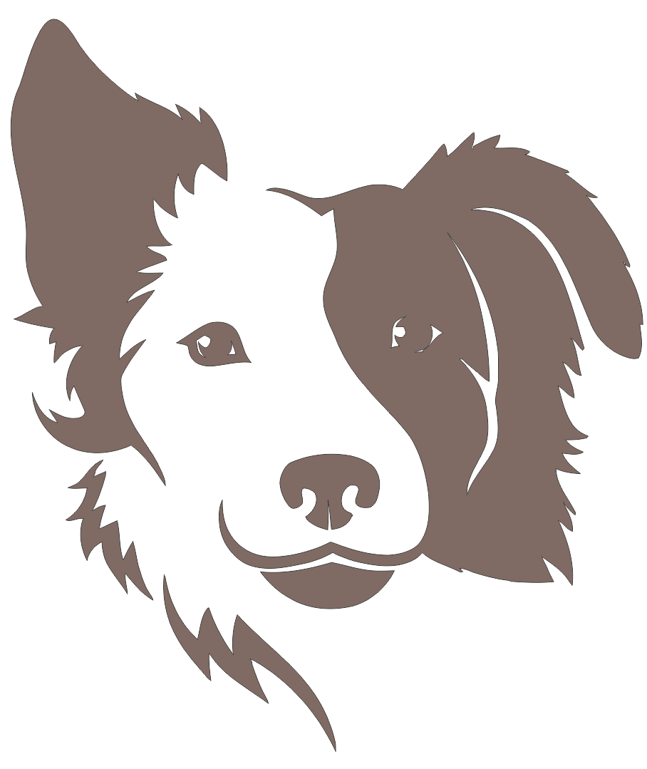 Border Collie Dog Free DXF File