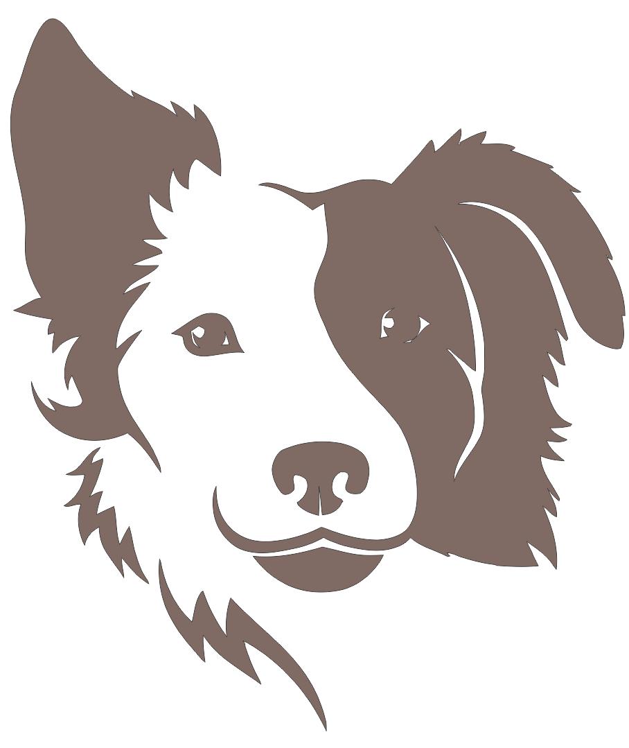 Border Collie Dog Free CDR Vectors Art