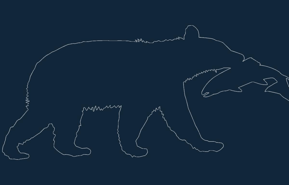 Animal Bear Catching Fish Free DXF File