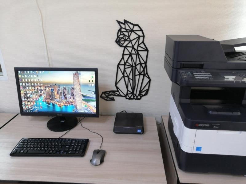 Laser Cut Cat Polygon Art Wall Decor 3d Sculpture Art Free DXF File