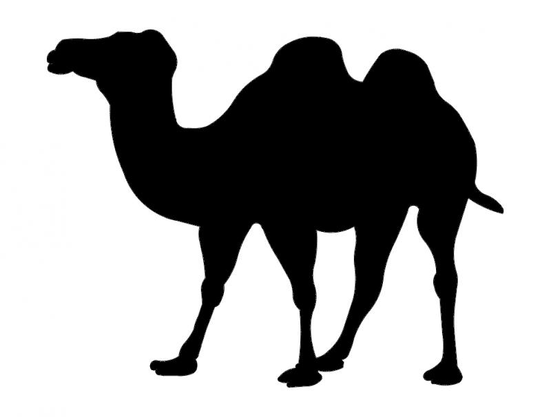 Wielblad (camel Silhouette) Free DXF File