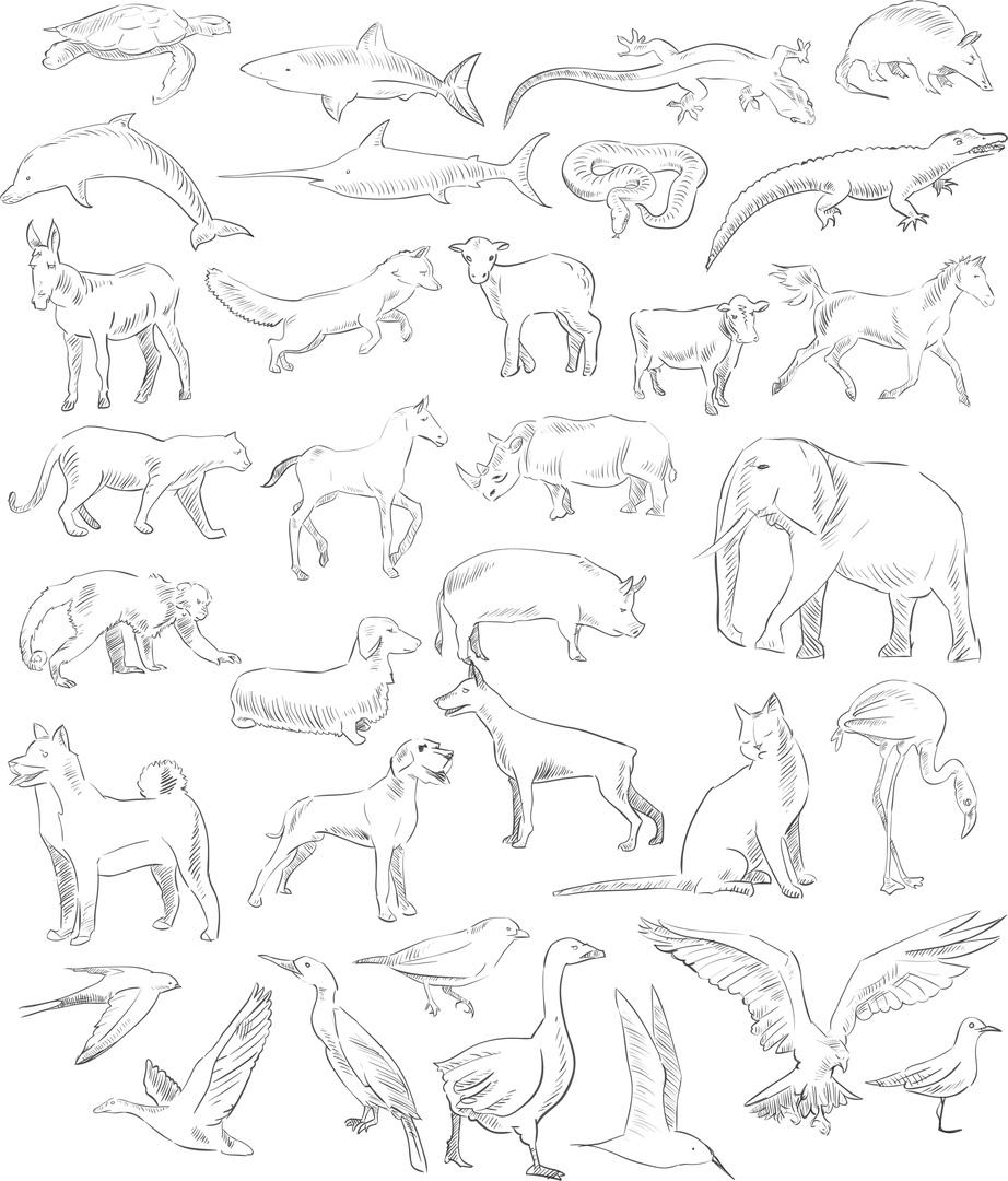 Handdrawn Animals Set Free CDR Vectors Art