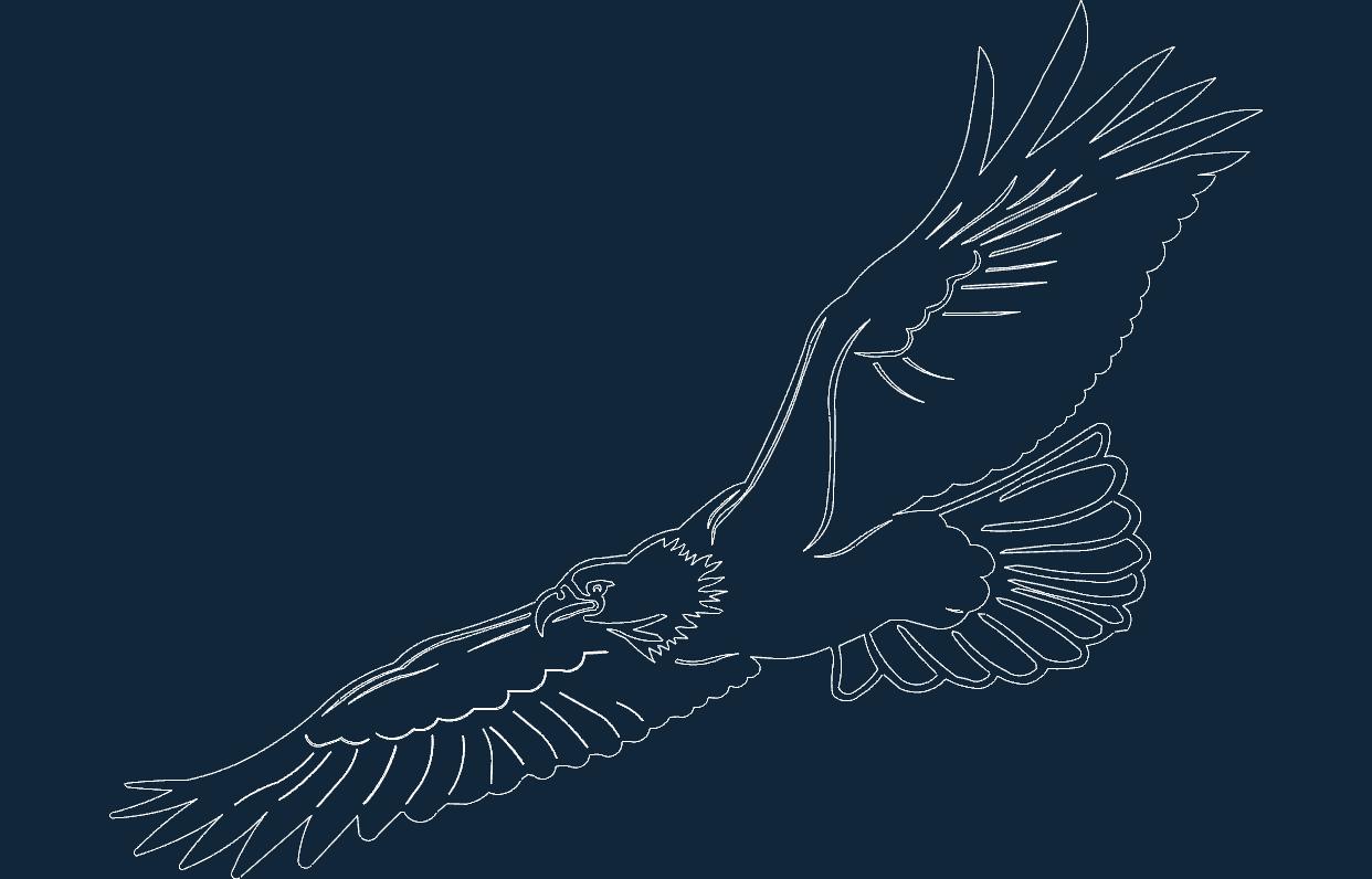 Eagle Flying Sketch Sticker Free DXF File