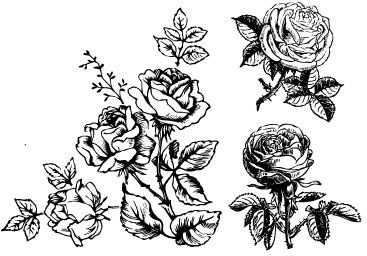 Handpainted Flowers Wall Decoration Free CDR Vectors Art