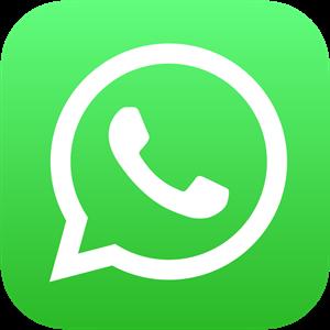 Whatsapp Icon Logo Vector Free AI File