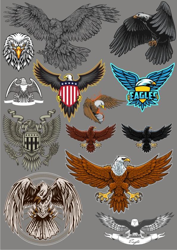Eagles Set Free CDR Vectors Art