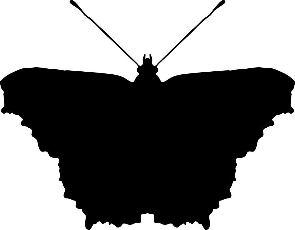 Black Butterfly Free AI File