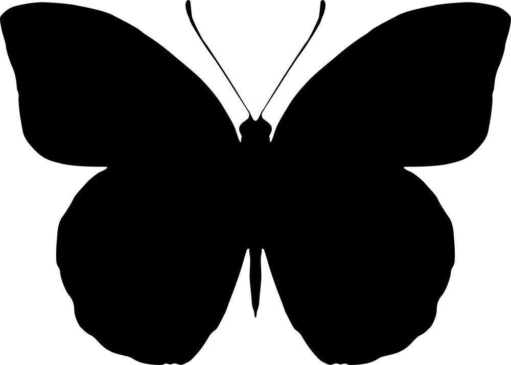 Butterfly Pattern Free AI File