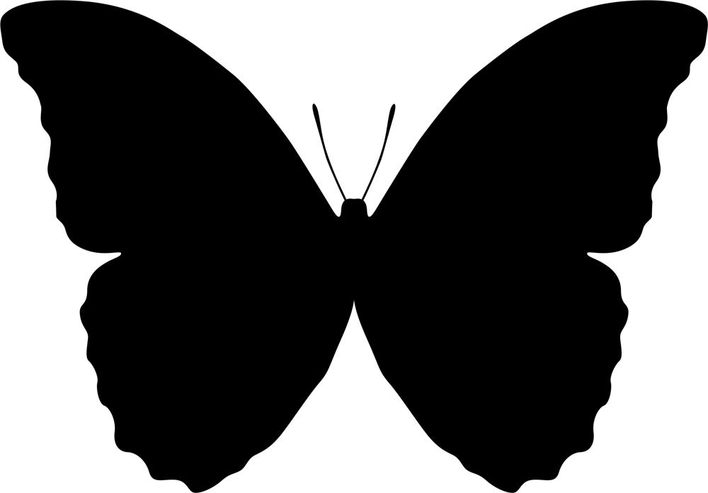 Butterfly Vector Art Free AI File