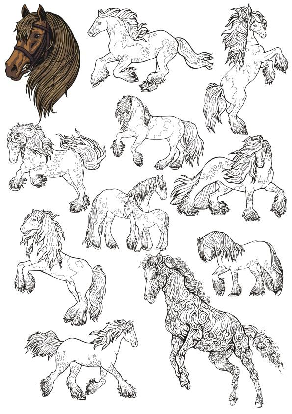 Horse Line Art Set Free CDR Vectors Art