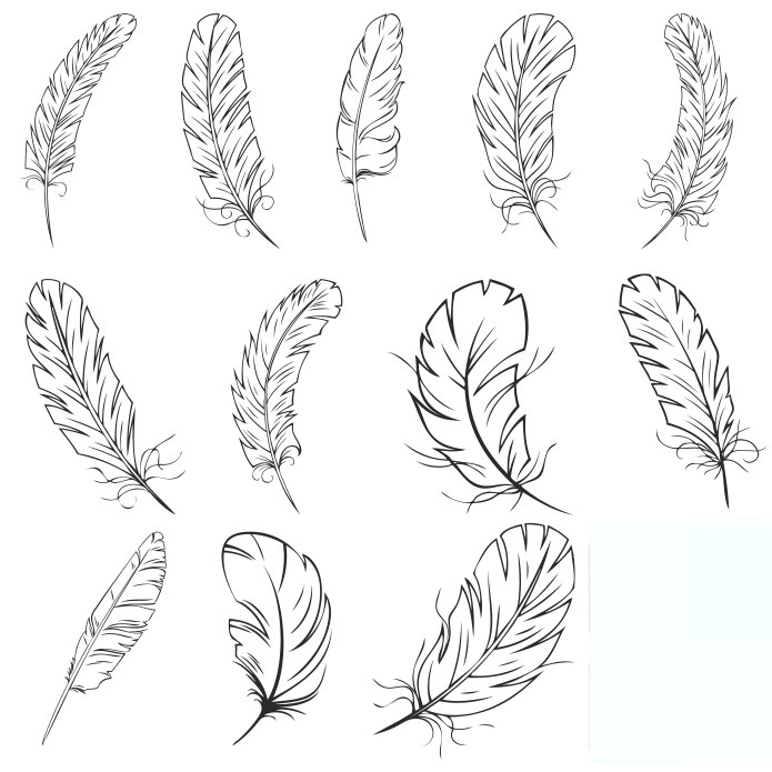 Collection Of Vector Feathers Feather Free DXF File