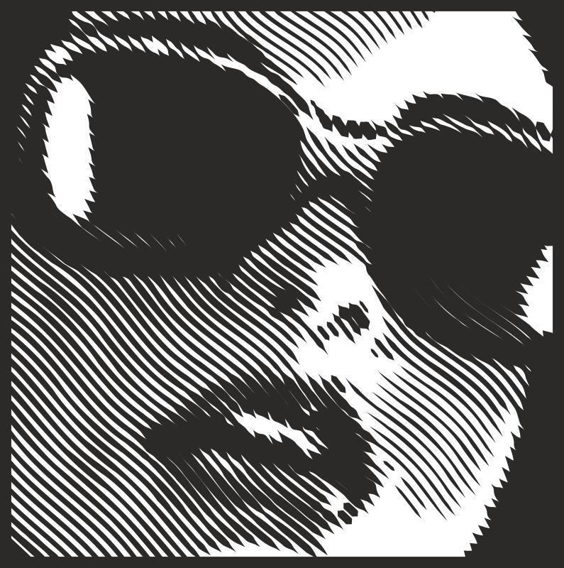 Woman's Face Optical Illusion Sticker Free CDR Vectors Art