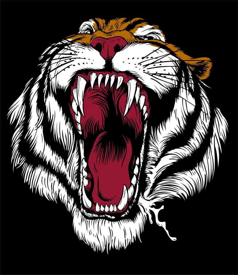 Tiger Free CDR Vectors Art