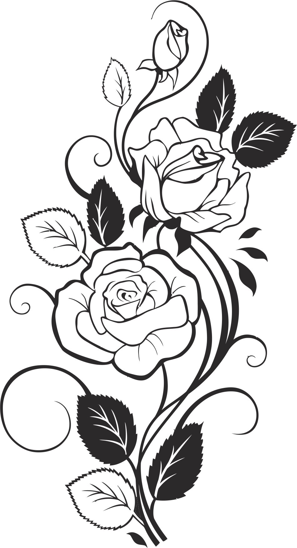 Black And White Rose Free CDR Vectors Art