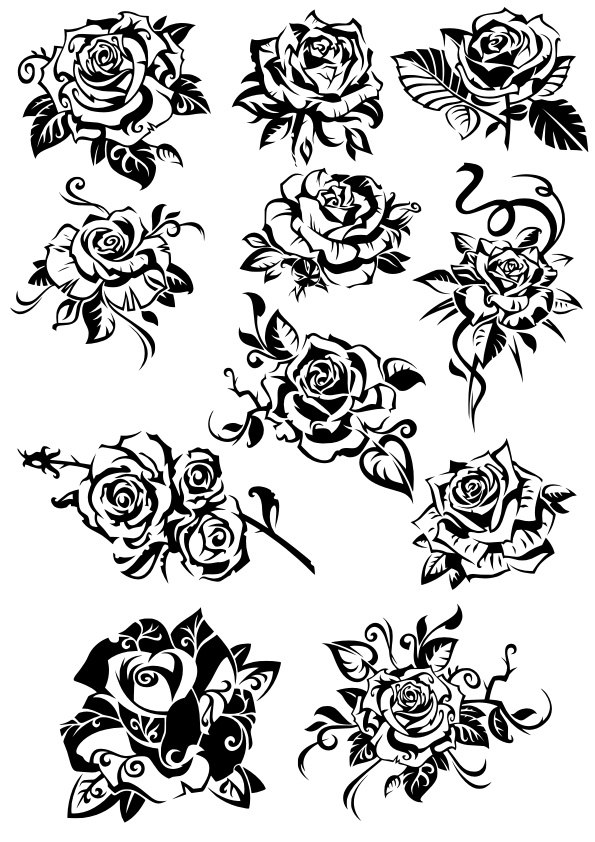 Flowers Roses  Collection Free CDR Vectors Art