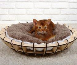 Cat Litter Box File Download For Laser Cut Free CDR Vectors Art
