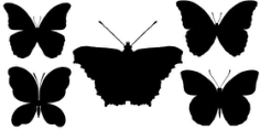 Black Butterfly silhouette Free CDR Vectors Art