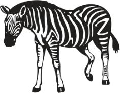 Zebra Free CDR Vectors Art